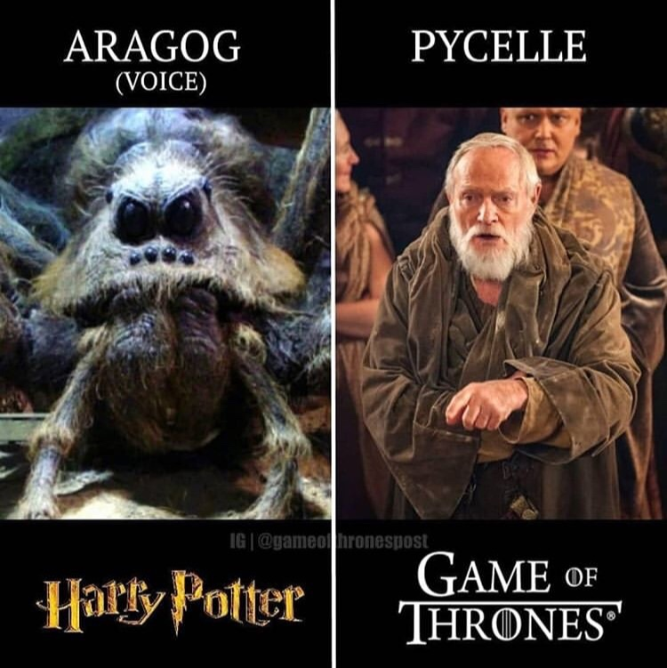 Actors in Both Harry Potter and Game of Thrones