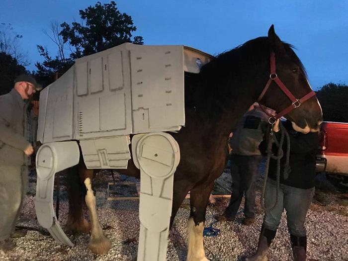 AT-AT Star Wars Horse Cosplay