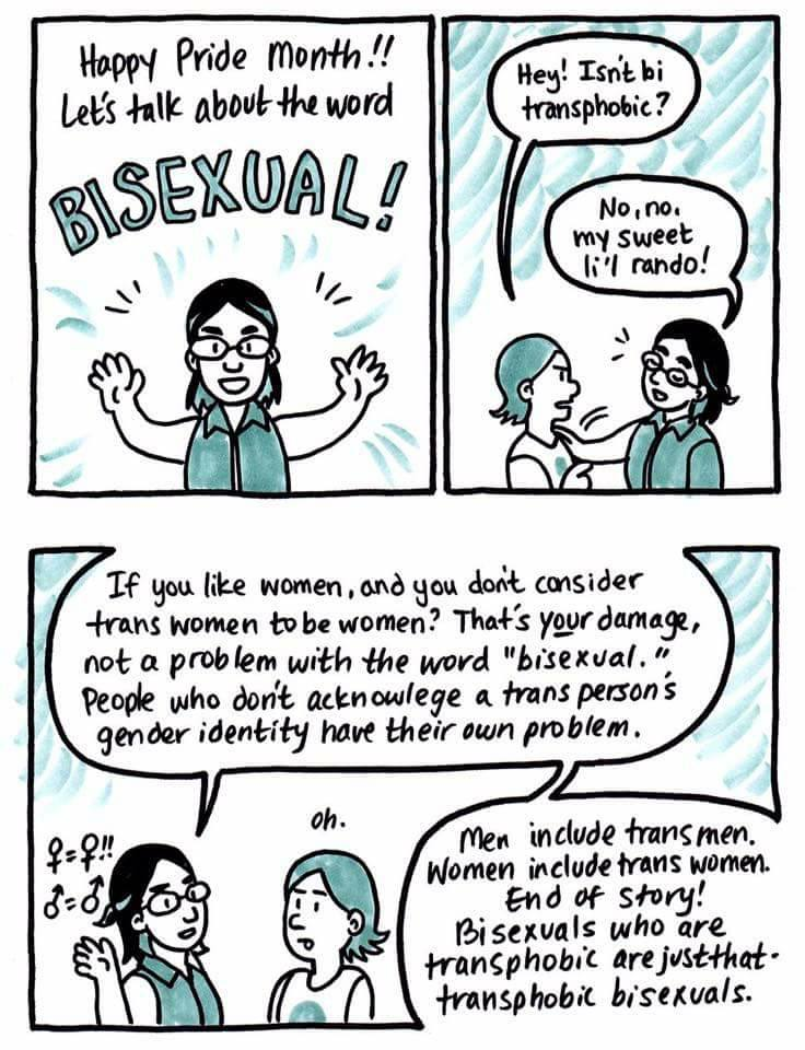 Bisexuality Comic
