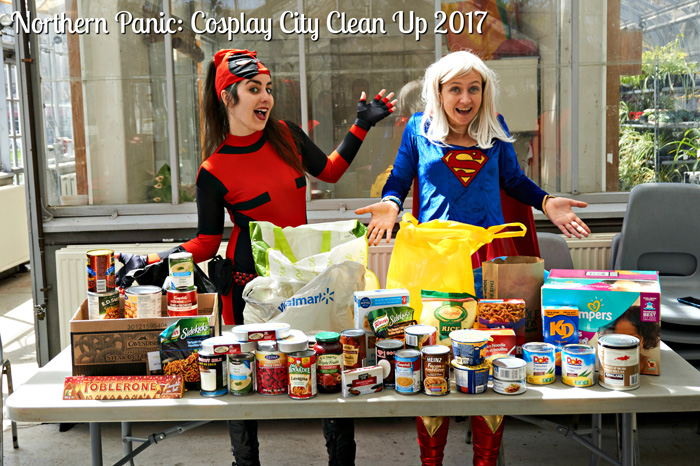 Cosplay Clean Up 2017