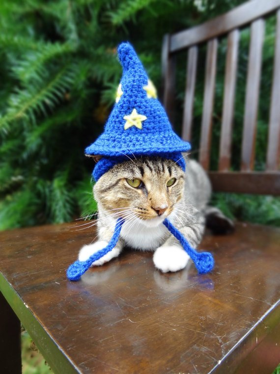 Crochet Wizard Cat Hat