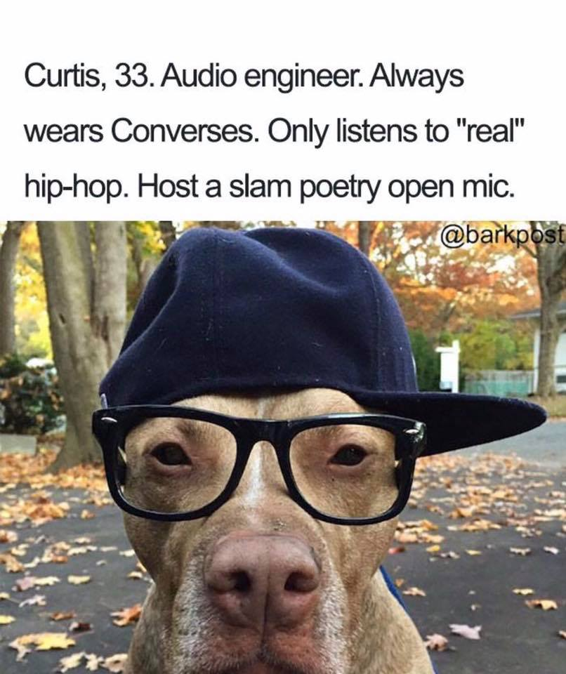 Hilarious Dog Bios