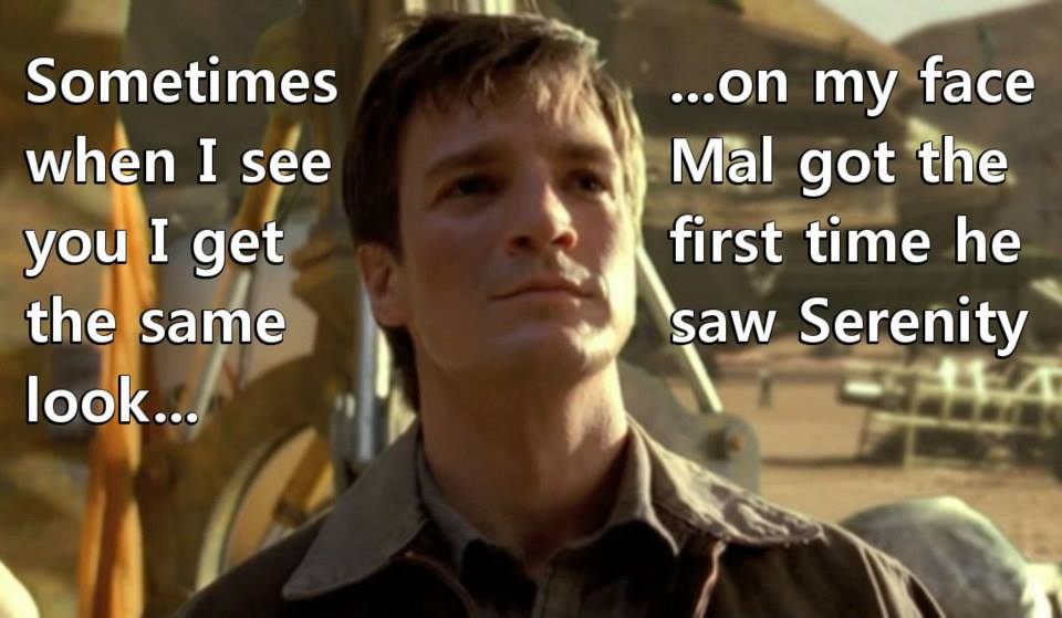 Firefly Valentines Day Cards