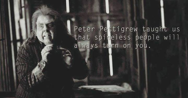 What Harry Potter Characters Taught Us