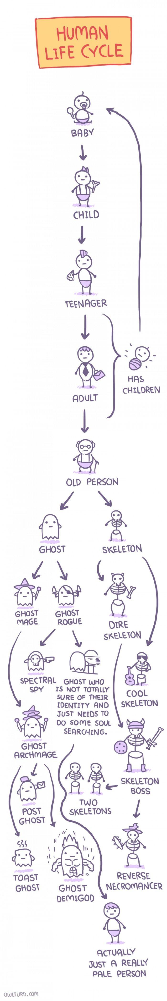 Human Life Cycle Comic