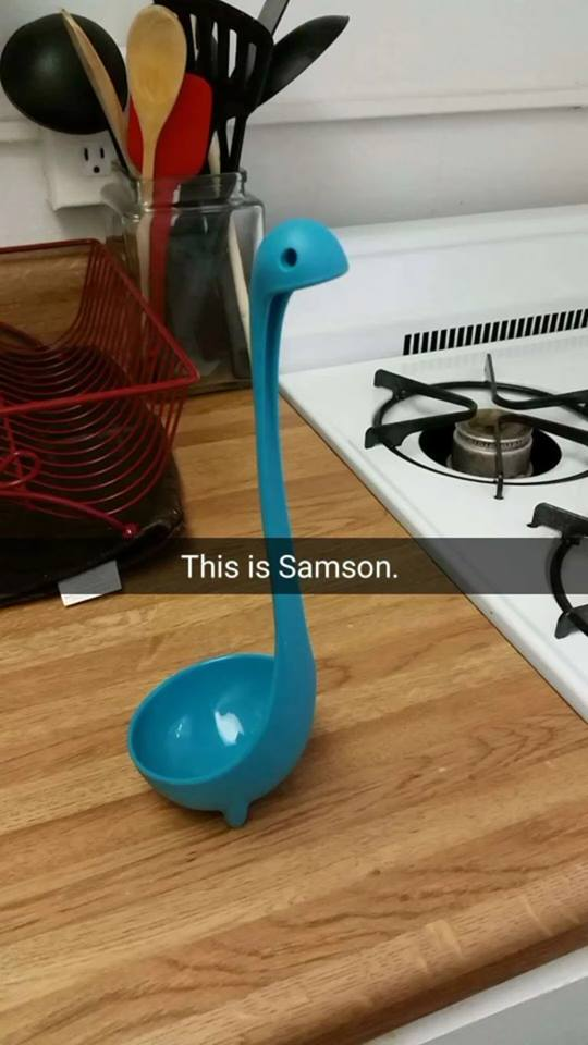 Meet Samson the Ladle