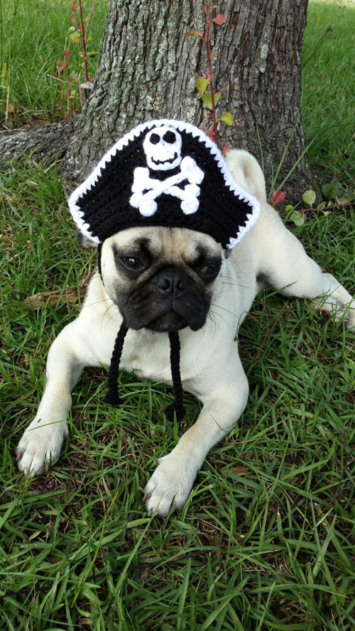 Crochet Pirate Hat for Cats & Dogs