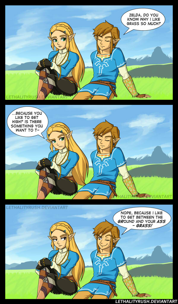 Zeldas Butt in Breath of the Wild Comics