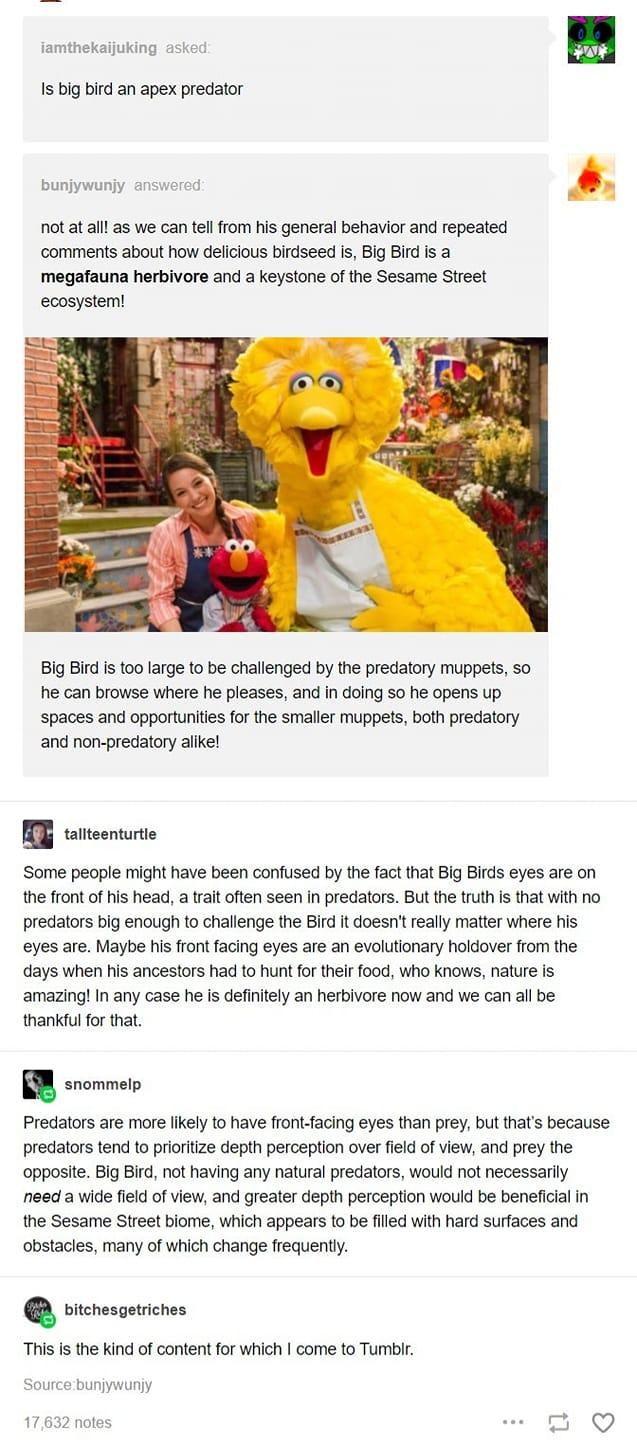 Is Big Bird an Apex Predator