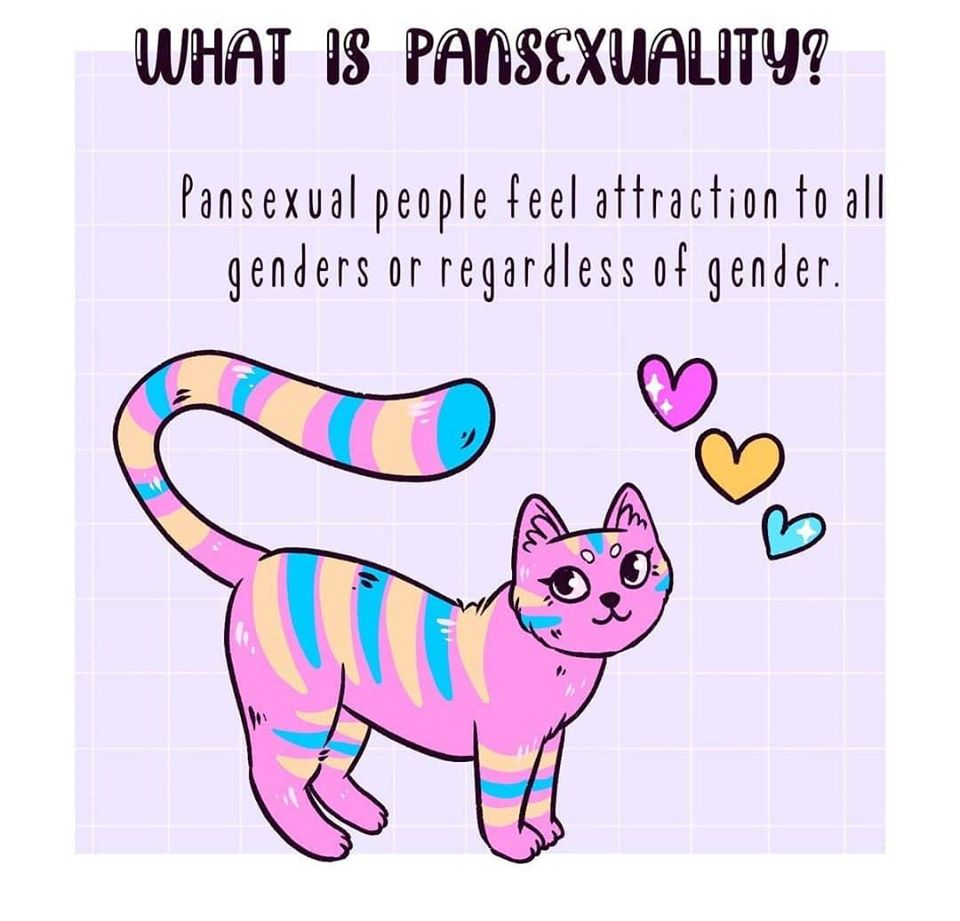 A Small Guide to Bisexuality & Pansexuality