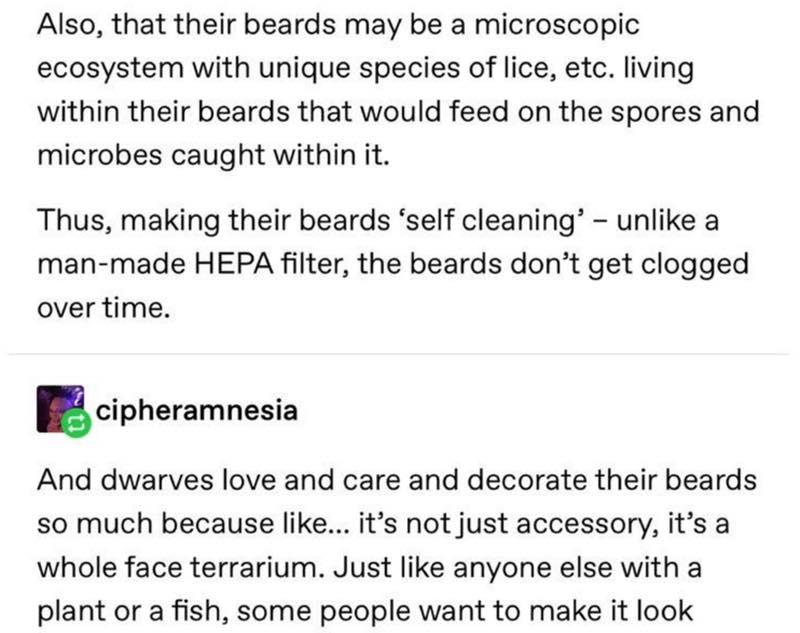 Dwarven Beards Fan Theory