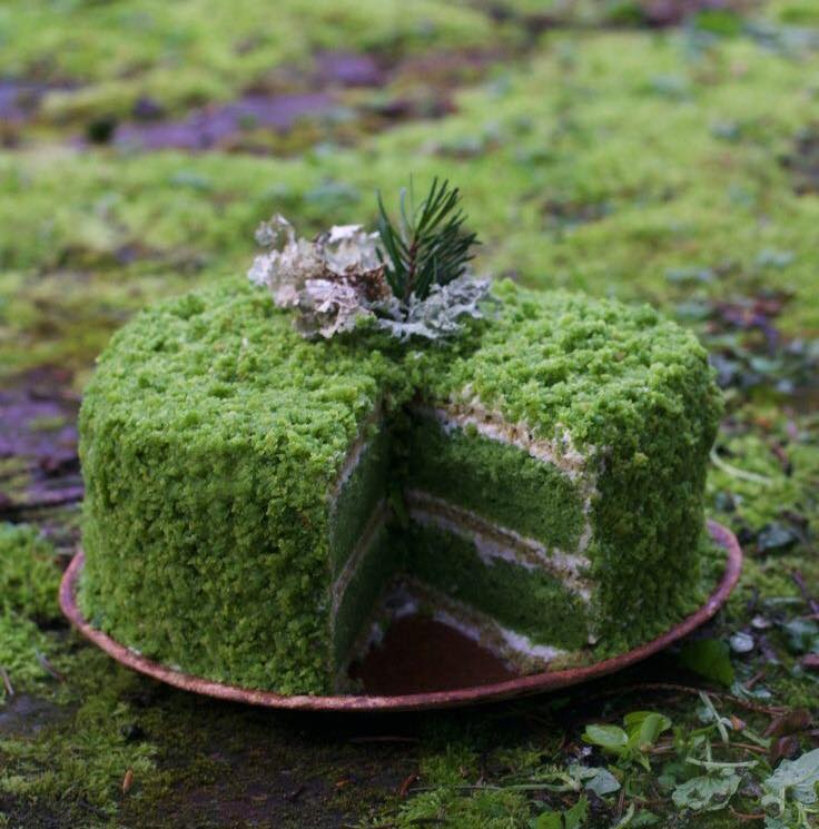 Forest Cakes