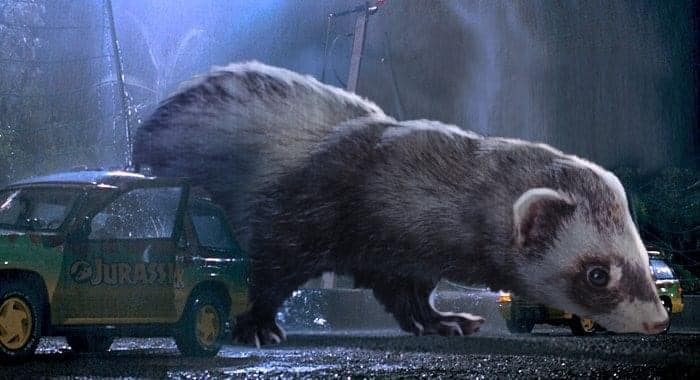 Jurassic Park but With Ferrets Instead of Dinosaurs