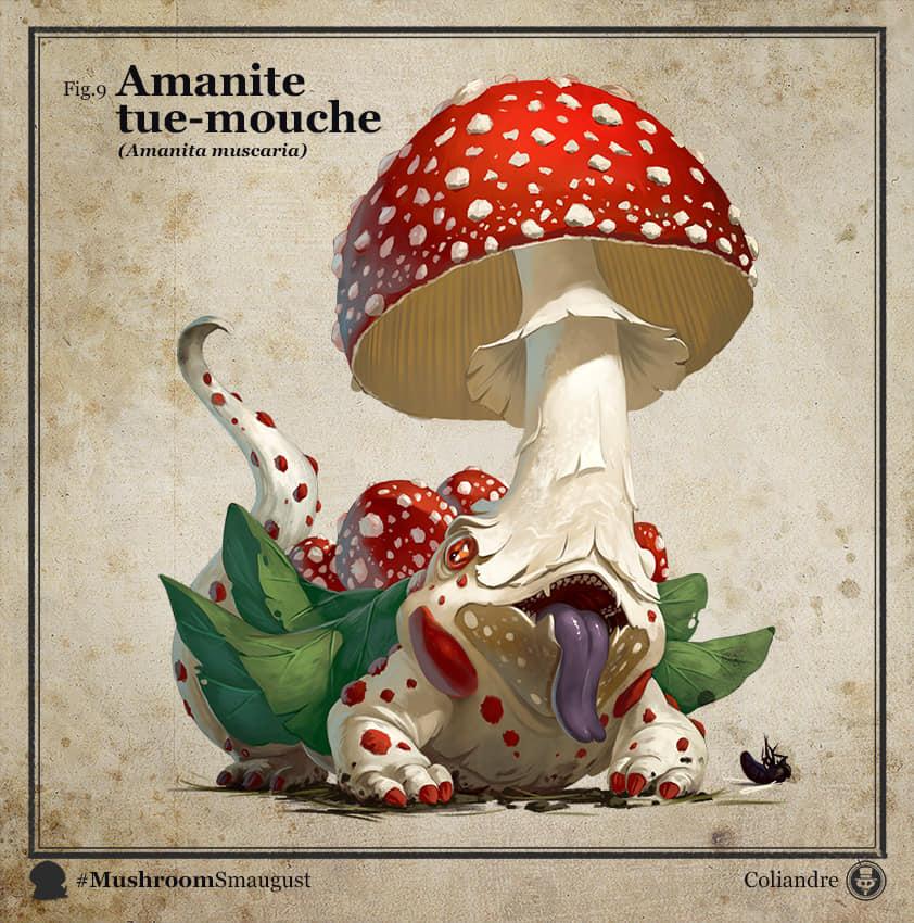 Mushroom Dragons Art