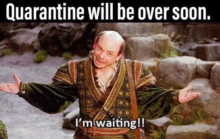 Princess Bride Qwawantine Memes