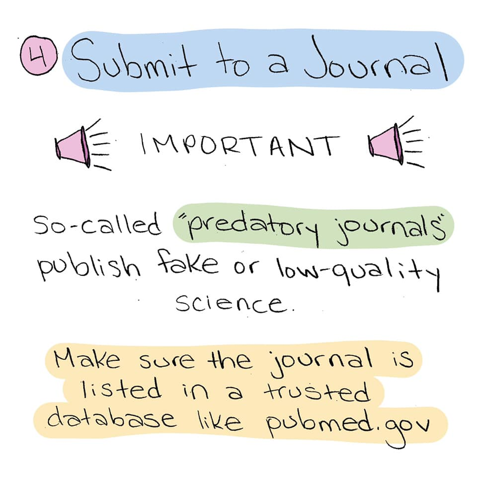The Long Road To Publishing A Scientific Paper