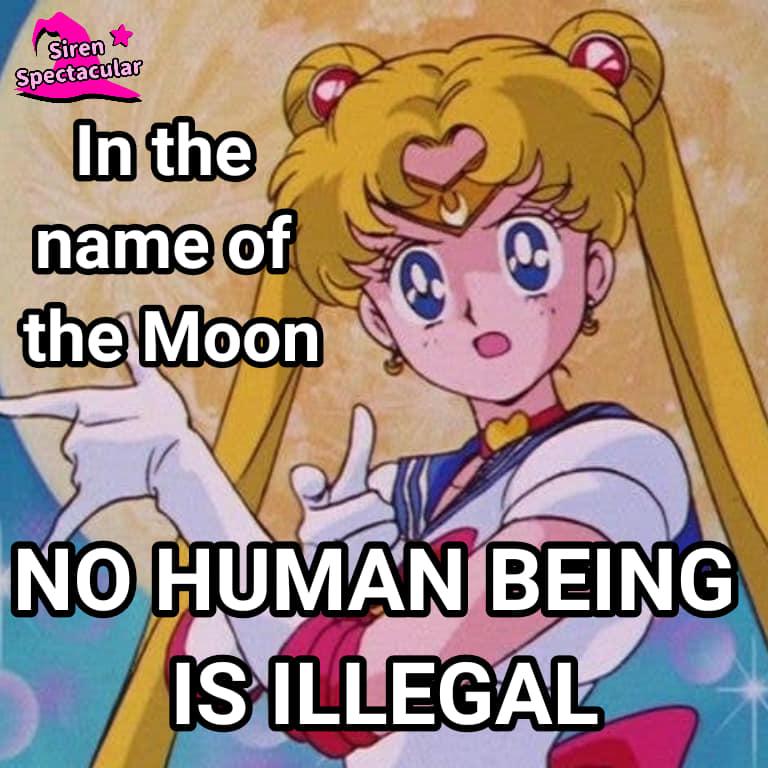 Sailor Moon Social Justice Memes