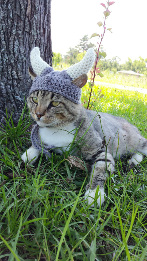 Knitted Viking Helmet for Cats