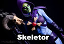 Lady Skeletor Cosplay
