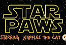 Star Paws Starring Waffles the Cat