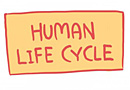 Human Life Cycle Comic