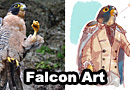 Falcon Anime Fan Art