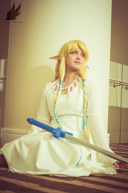 Skyward Sword Zelda Cosplay
