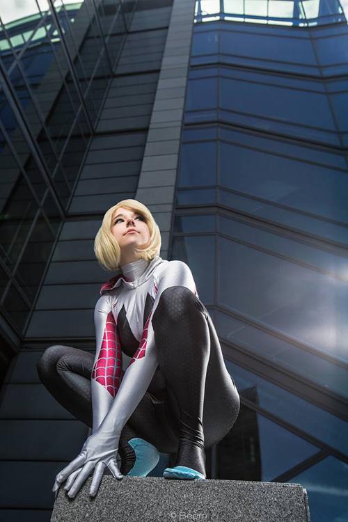 Spider-Gwen Cosplay   500 x 750 jpeg 113kB