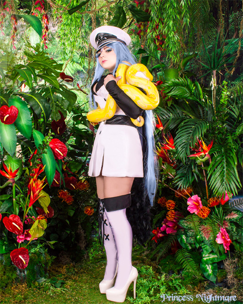 Esdeath from Akame Ga Kill! Cosplay