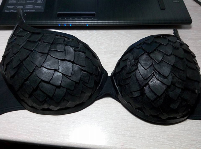 Make Your Own Scaled Bra