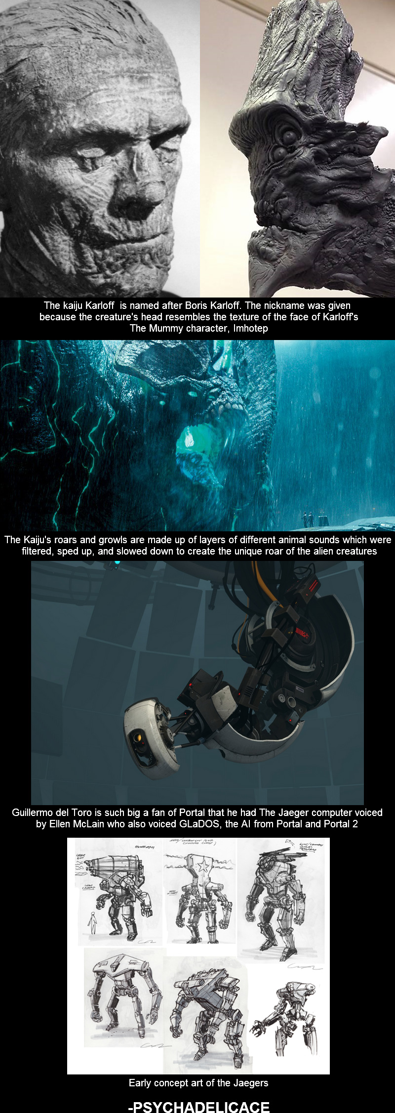 Pacific Rim Facts